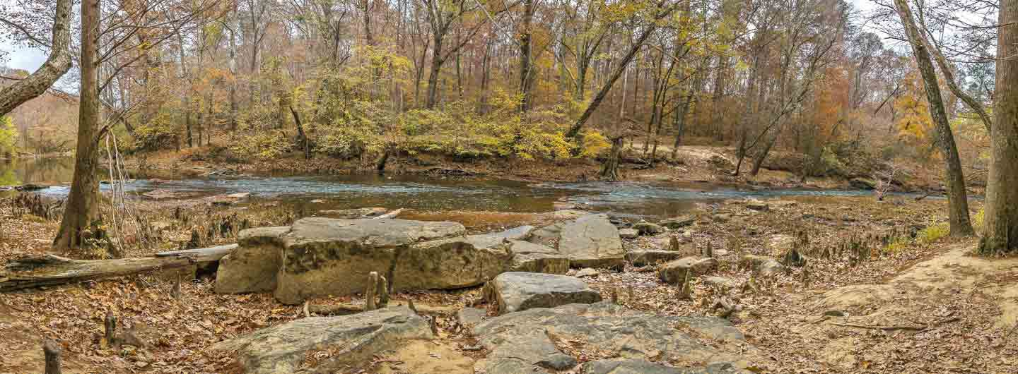 Leroy Percy State Park Guide Outdoorsy