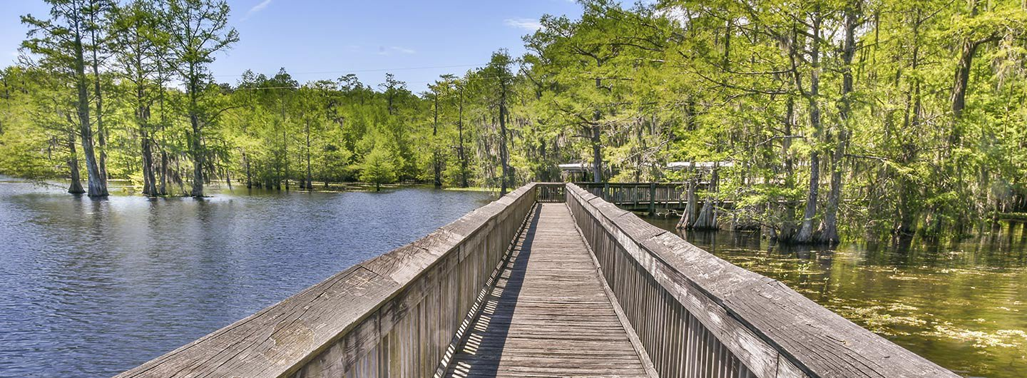 Chicot State Park Guide | Outdoorsy on