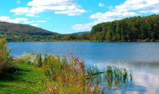 Cowanesque Lake
